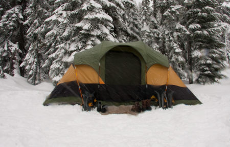 tent in de winter